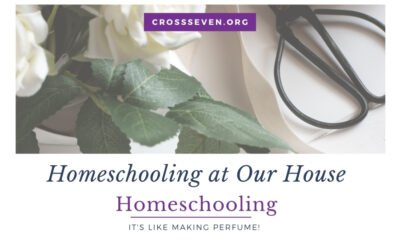 Homeschooling at Our House